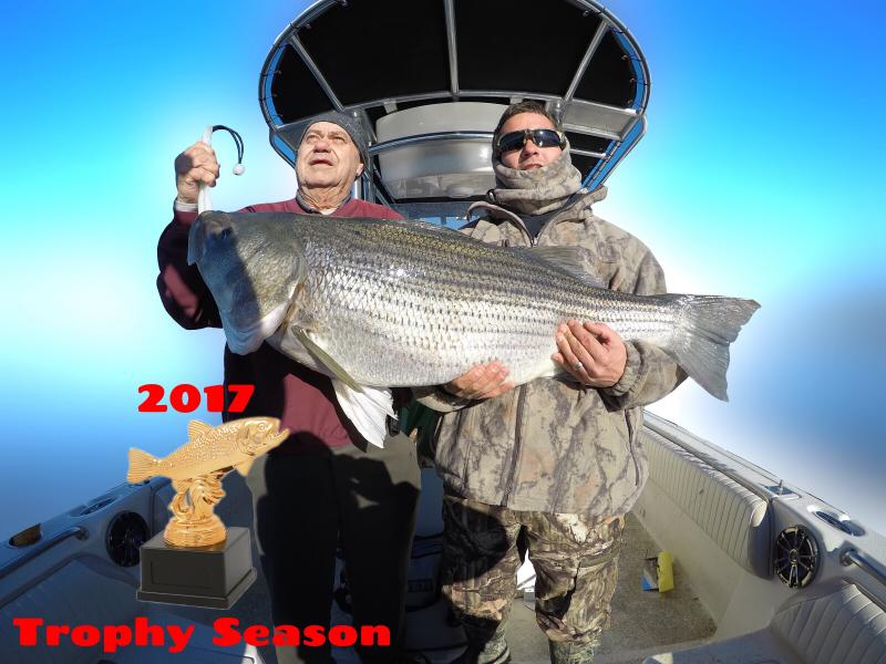 Monster Striped Bass Caught During 2017 Trophy Trip