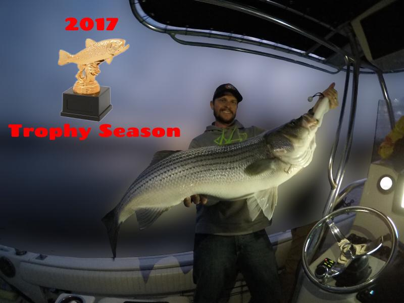 2017 Trophy Striper From Smith Lake, Alabama