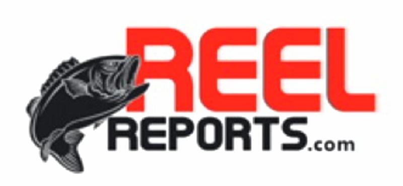 www.reelreports.com